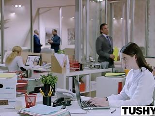شور و شوق TUSHY لانا رودز مقعد