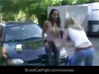 Rough cat fight at a carwash